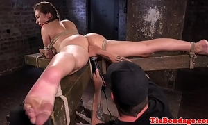 Busty s&m sub bound up and cum-hole fingered